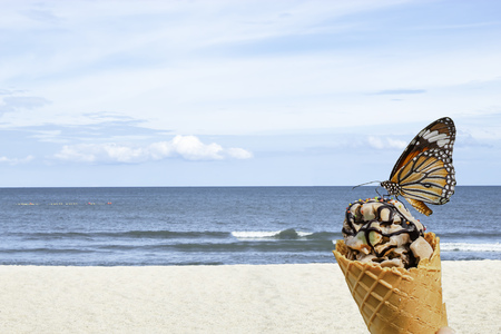 Orange Butterfly on Delicious ice cream Background sea and the bright sky in summer.