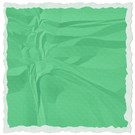 Green torn paper isolate on white background photo