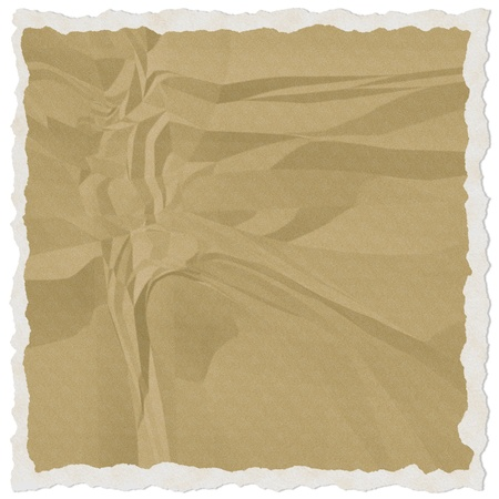 brown torn paper isolate on white background photo