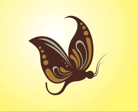 Butterfly vector logo icon