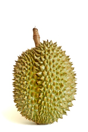 Durian, the king of fruit photo