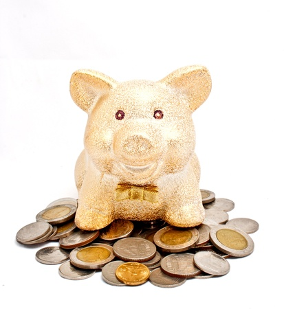 A golden piggy bank sitting on coins photo