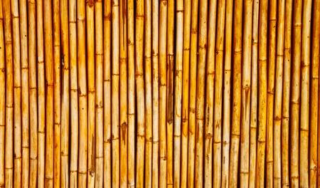 bambu: un fondo de pared de bamb�