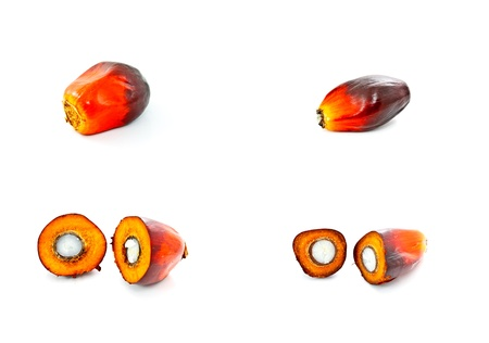 red palm oil: a set of oil palm fruit on white background