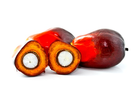 Oil Palm: palm oil fruits with the cut one Stock Photo
