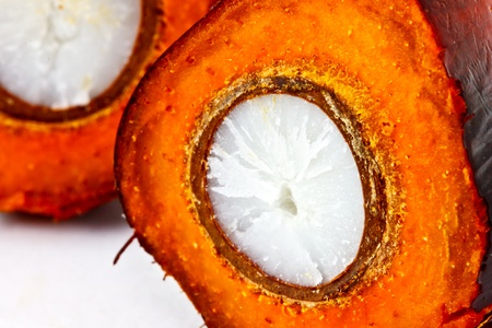 closeup shot of a cut oil palm fruit Stock Photo - 12345472