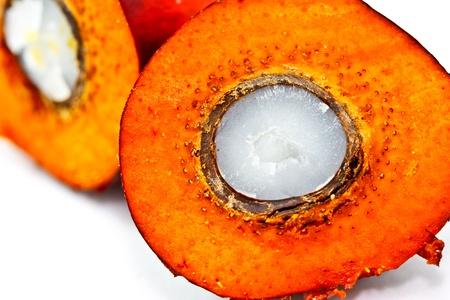 fruit trade: closeup shot of a cut oil palm fruit