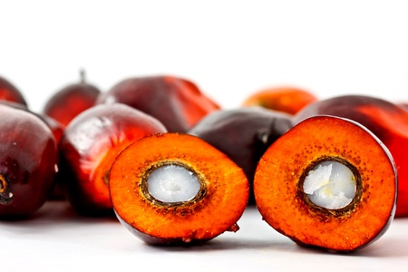biodiesel: palm oil fruits with the cut one Stock Photo