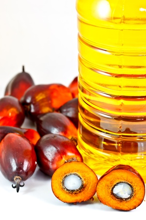 red palm oil: oil palm fruits and palm oil Stock Photo