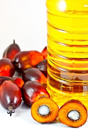 red palm oil: olio di frutti di palma e olio di palma Archivio Fotografico