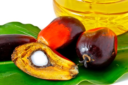 oil palm fruit and palm oil olein Stock Photo - 12345469