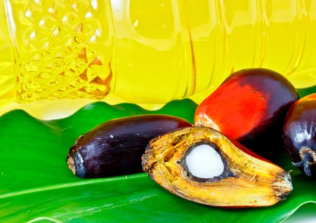 oil palm fruit and palm oil olein Stock Photo - 12345467