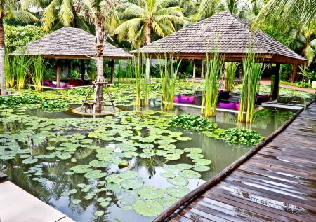 pavillion: lotus pond in the tropical garden of a luxury hotel in Thailand Stock Photo