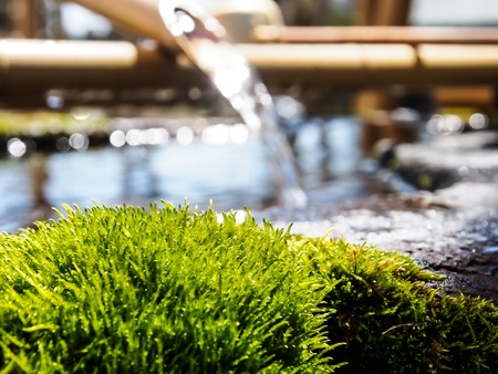 purification: purification fountain at Japanese shrine