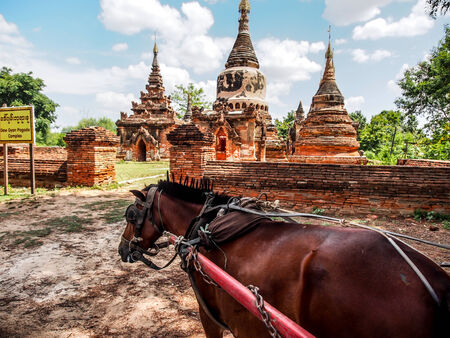 daw: horse carriage and Daw Gyan Pagoda complex, Ava, Myanmar