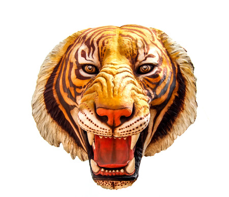 isolated tiger: immagine isolato tigre su sfondo bianco