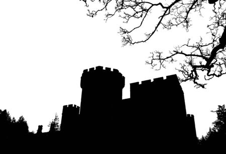 gothic castle: silhouette of Gothic castle on white background