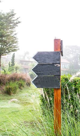 blank sign: empty wooden direction signboard in a garden