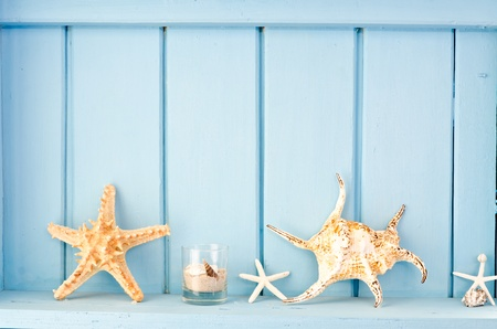 Blue wall decoration with shellfish, beach style decoration Stock Photo
