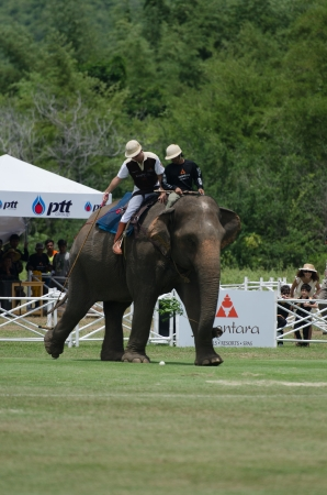mahout: HUA HIN, THAILAND -SEPTEMBER 13: Unidentified polo players play in elephant polo games during the 2012 King  Editorial