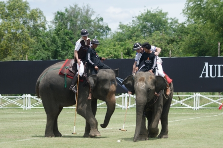 HUA HIN, THAILAND -SEPTEMBER 13: Unidentified polo players play in elephant polo games during the 2012 King