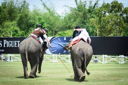 mahout: HUA HIN, THAILAND -SEPTEMBER 13, 201: Unidentified polo players play in elephant polo games during the 2012 King
