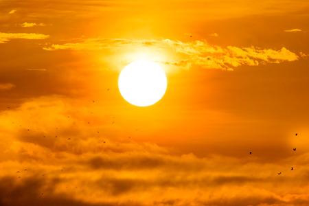 Rising sun with little birds.