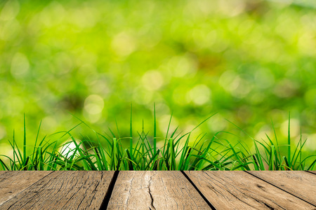 floo: spring green grass with green bokeh and sunlight and wood floo