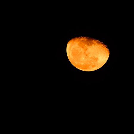 Orange moon photo