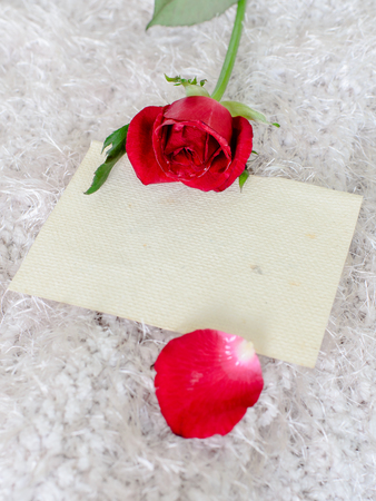 Red rose and old mulberry paper in vintage style process. photo