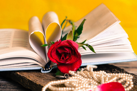 Red rose necklace and  heart shape book with yellow wall, still life. photo