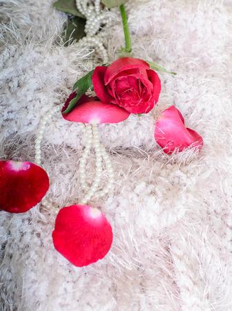 elegant rose with necklace photo