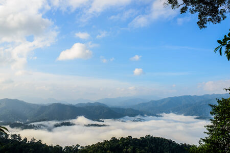 fog sea at PanoenThung view point in Kaeng Krachan national park,Thailand photo