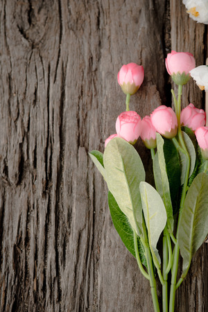 Wood background with spring flowers. photo