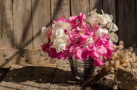 flowers on aluminium bucket on grunge wall. Natural light photo