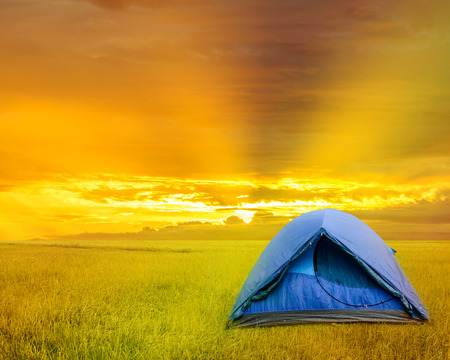 grassy: sun rise over camping tent inside grassy field Stock Photo
