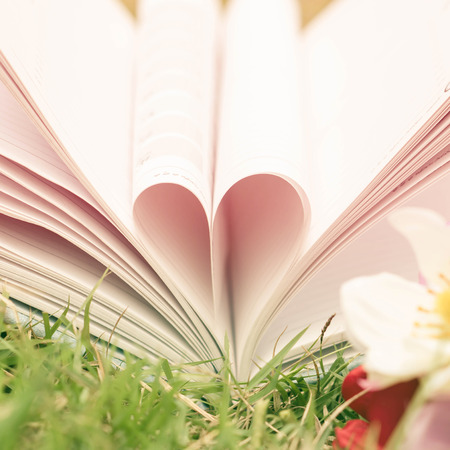 dept: Vintage book heart shape on grass, dept of field. Stock Photo