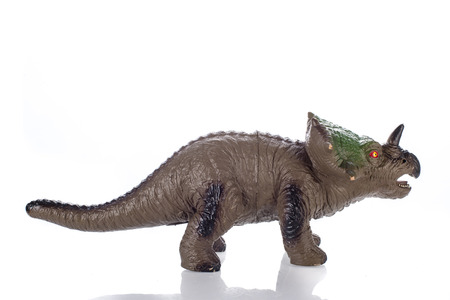 triceratops: triceratops toy isolated on white