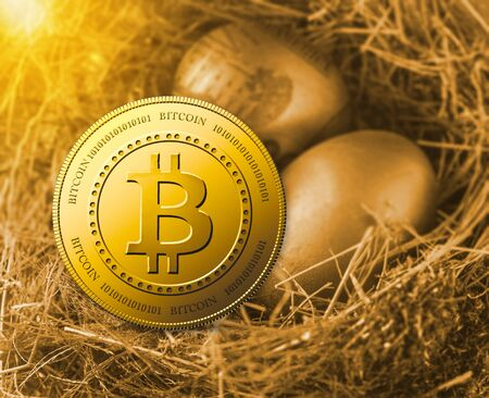 Bitcoin with golden eggs in nest.