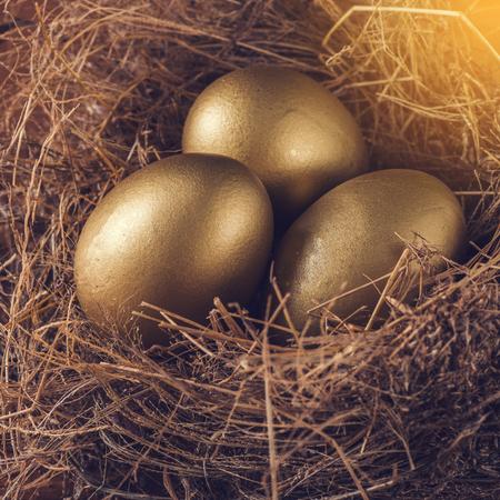 millonario: A Hay Nest with 3 golden Eggs.