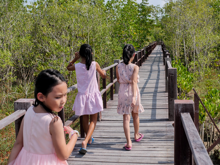 Happy girls travelling at mangrove forest in sunny day.