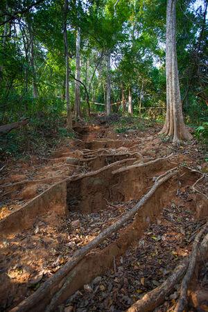 knotting: Soil Erosion