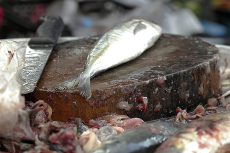 fishmonger: Presented at the evisceration of fish fishmonger in the fish market of Thailand . Not present in uncleanness