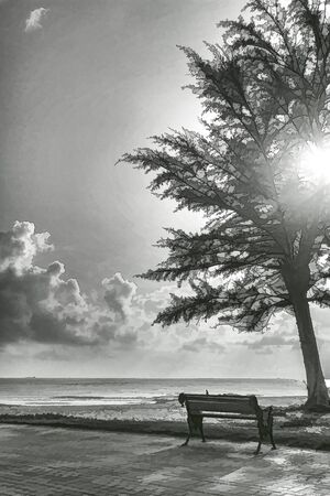sunsets: Drawings, black and white nature sea viewpoint.