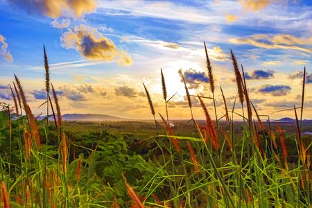 Illustre paysage
