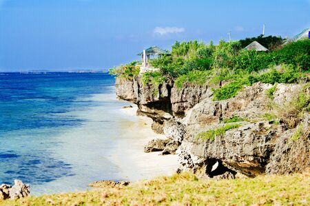 sugar palm: Landscape of paradise tropical island with white sand beach