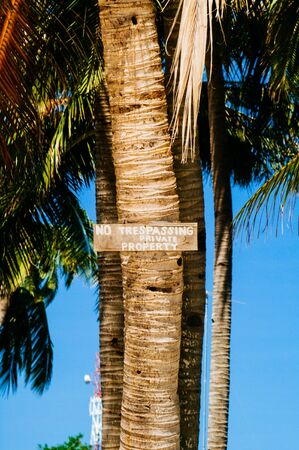NO TRESPASSING sign on coconut palm tree in the island Stock Photo