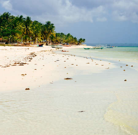 bathe: Tropical white sand beach with green palm trees and parked fishing boats in the sand. Exotic island paradise