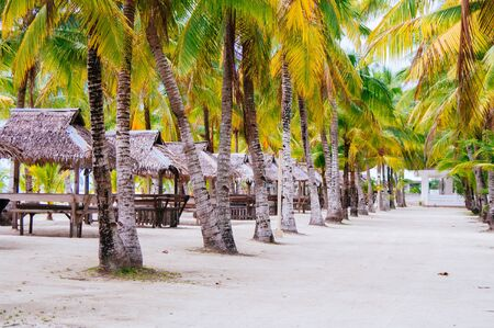 ocean waves: Landscape of paradise tropical island with palms cottages and white sand beach