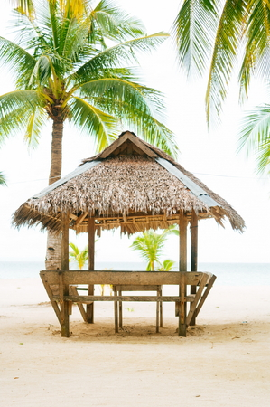 sugar palm: Landscape of paradise tropical island with palms cottages and white sand beach
